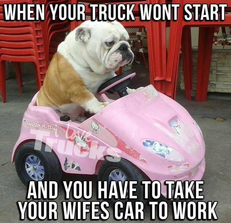 Funny Work Quotes : Me except I have a nice car ;)