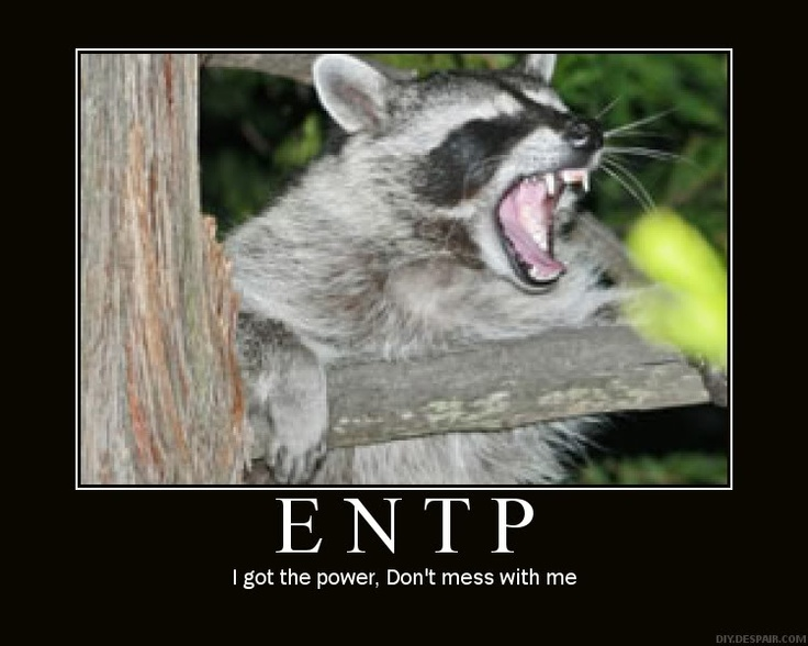 119 best Myers-Briggs Type Indicator® (MBTI®) images on ...