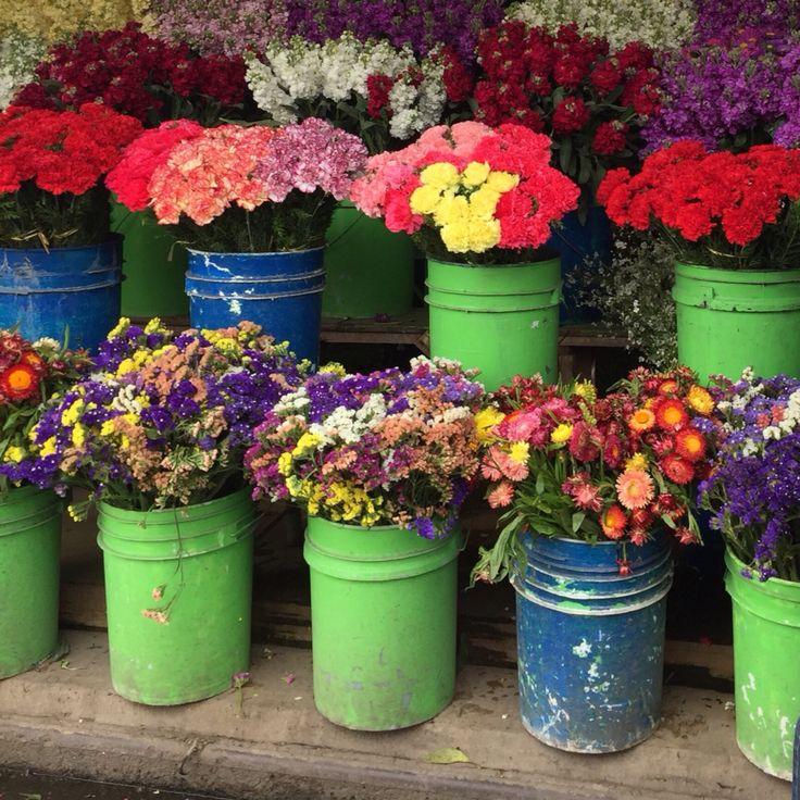 Flowers-Dominga