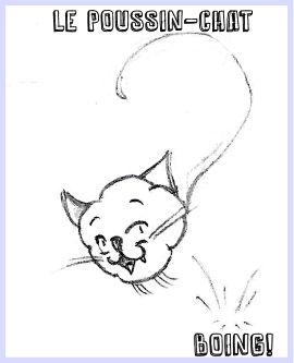 Voici Poussin-chat, mon troll personnel dont je vous illustre les aventures quotidiennes sur son propre site web... sale bête!