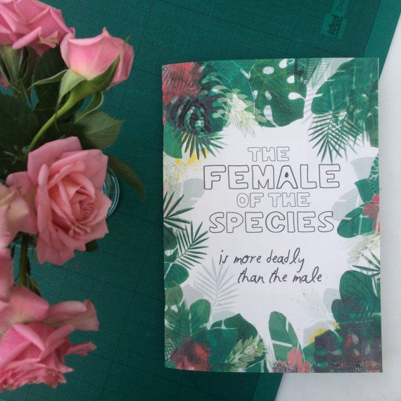 The Female of the Species Handmade Zine. by heyzinesters on Etsy
