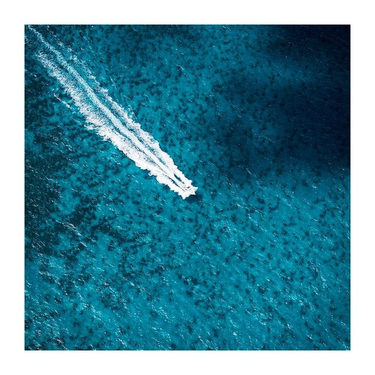 """En Route"" - in the waters surrounding Rottnest Island, WA. http://tystedman.photo/ #nikonaustralia #rottnestisland #justanotherdayinwa #perthisok #seeaustralia"