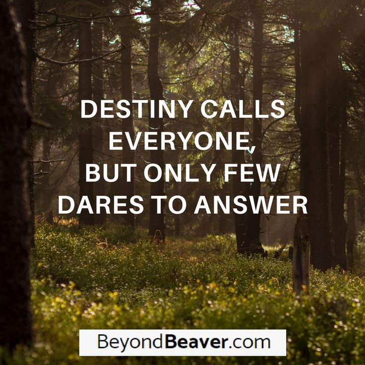 Listen to what your destiny has to say. Sometimes, that's where your journey is. #destiny #motivation #businessjourney