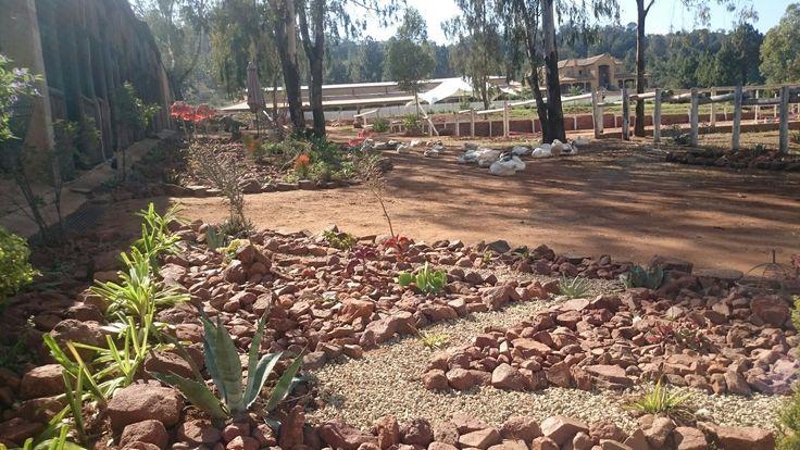 New Rock gardens in progress