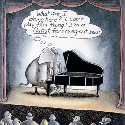 This elephant needs more confidence.