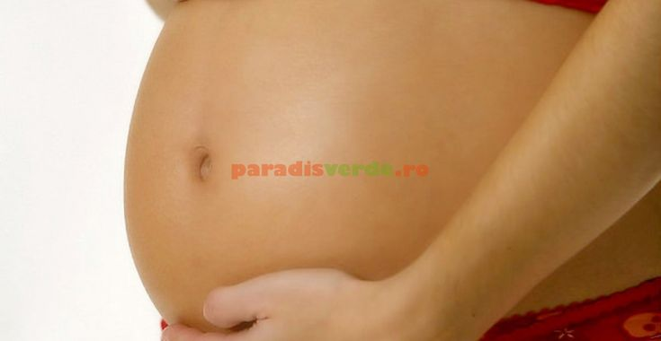 Ce să mâncați şi ce nu în timpul sarcinii | Paradis Verde
