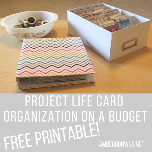 Organize with what you have at home! Project Life Card Organization on a budget with free printable! amberdowns.net