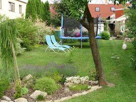 u morkusovic: Kterak na živý kvetoucí plot...
