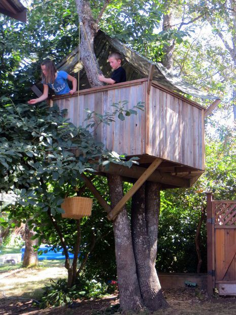 Simple Tree House Plans For Kids the 25+ best simple tree house ideas on pinterest | diy tree house