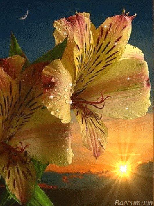 Картинки мир анимации цветы красивые движущиеся, нарисовать открытку