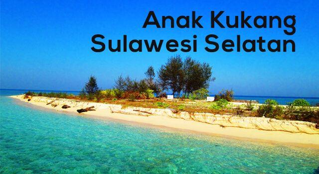 Lirik Lagu Anak Kukang - Sulawesi Selatan