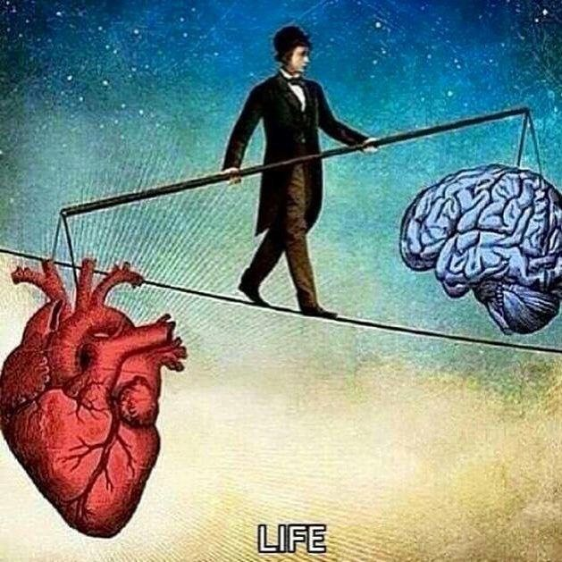 Balance is important and necessary. #heart #mind #lifehacks