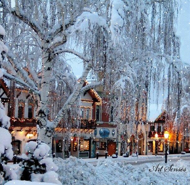 Beautiful Christmas escenary