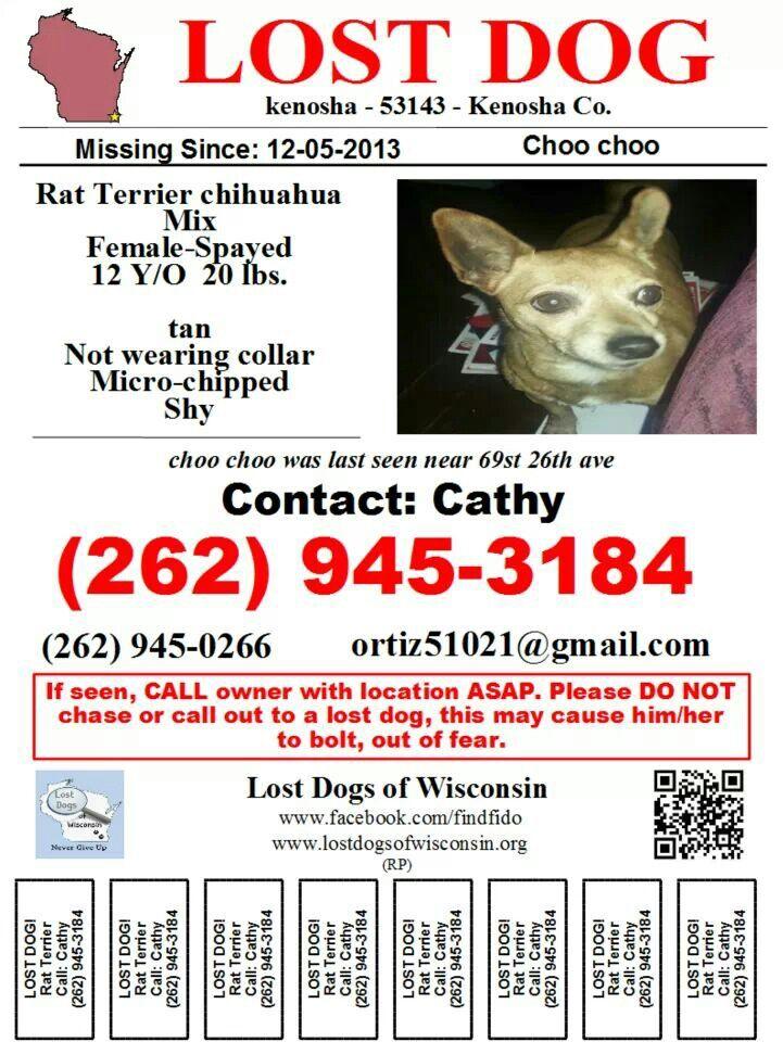 176 best Missing Pets images on Pinterest Animal rescue, Find - craigslist kenosha