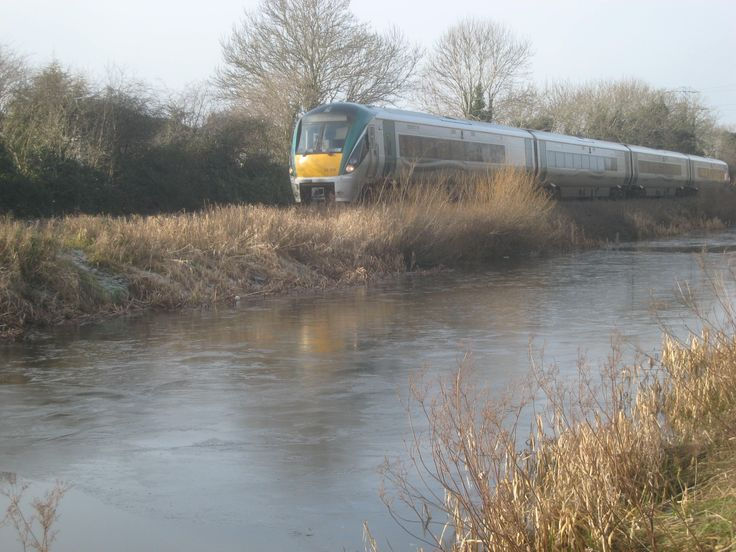 Train passing along the Royal Canal in Co. Kildare