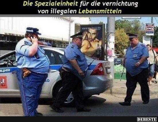 Die Spezialeinheit für die vernichtung von illegalen Lebensmitteln.. | Lustige Bilder, Sprüche, Witze, echt lustig