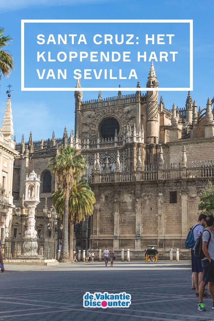 Triana is een bijzondere volksbuurt, in Centro vind je (naast veel winkels!) de bekende Metrosol Parasol en ook de stierenarena in Arenal is een aanrader. Toch haalt, als je het ons vraagt, geen van deze wijken het bij Santa Cruz. In deze voormalige Joodse wijk kun je urenlang slenteren én bezienswaardigheden van wereldklasse bewonderen. Sterker nog: het zijn de bezienswaardigheden waar Sevilla haar populariteit aan dankt.