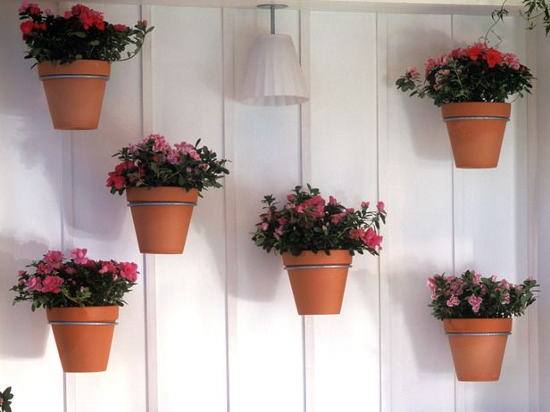 Vertical Potted Plants - Outdoor Designer Looks for Under $500 on HGTV