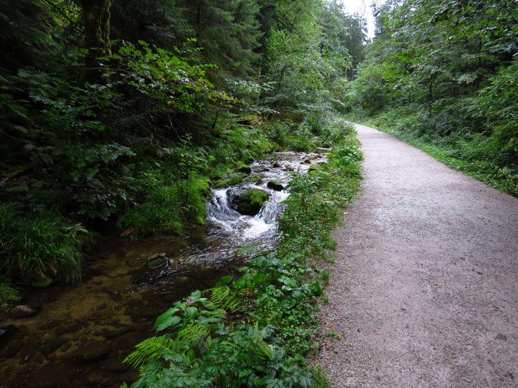 Día 16 (Estrasburgo, Wasserfälle Allerheiligen, Lago Mummelsee) -Diarios de…