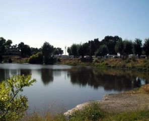 Turtle Beach RV Resort- Manteca, CA (5 minutes away! fishing, boats, playground, pets, no campfire)