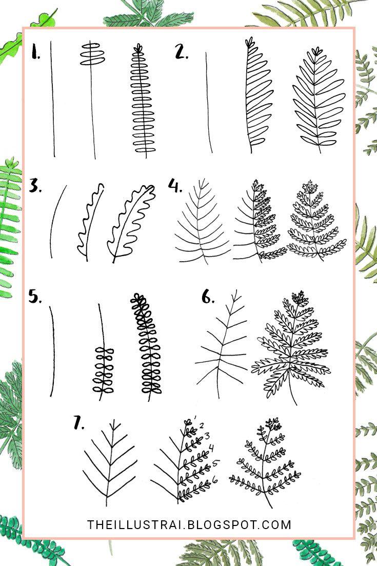 7 Ways to Draw Fern Leaves