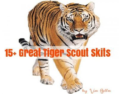 15+ Great Tiger Scout Skits