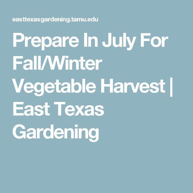 25 best texas fall garden ideas on pinterest fall - Prepare vegetable garden for winter ...