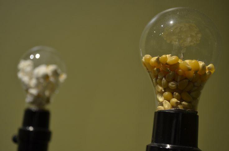 """""""Nunca pienses con el estómago vacío"""" Dos lámparas aluminio y vidrio/ dos focos incandescentes con granos de palomitas de maíz. 2012"""