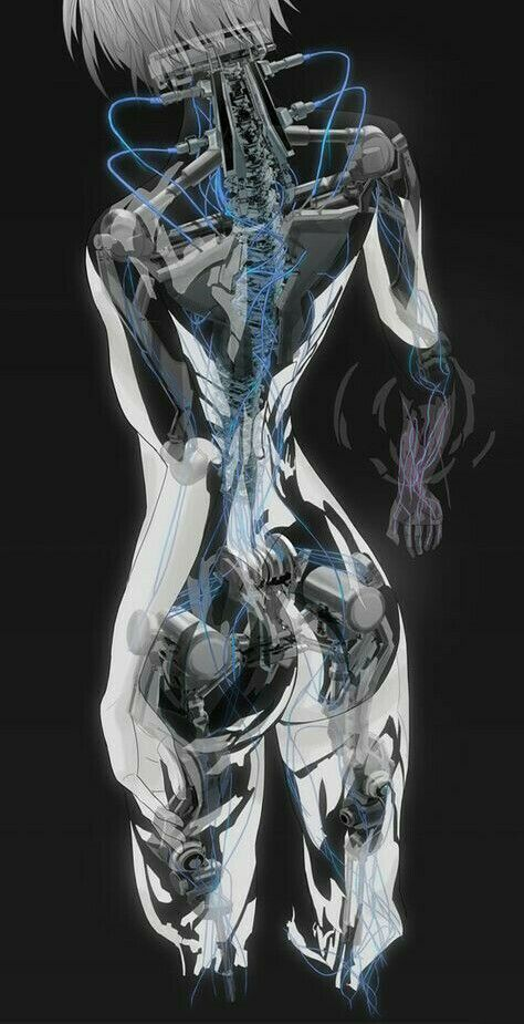 Ghost in the Shell. Major Motoko Kusanagi Back Roentgenography / 攻殻機動隊 少佐 草薙素子 背面X線撮影