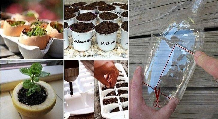 Se state cercando un metodo economico per iniziare a piantare i vostri semi a primavera, ecco a voi alcuni suggerimenti utili da mettere in pratica. Avreste mai pensato di creare dei piccoli semenzai adoperando delle bucce di limone o dei gusci d'uovo? Ebbene, con pochi oggetti che già avete in casa riuscirete a mettere a …