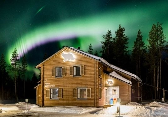 An enchanting Lapland trip with wildlife park entrance, plus an optional husky safari and Northern Lights hunt by snowscooter – includes travel