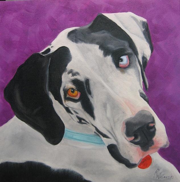 1000 Images About Dog Art On Pinterest Daisy Dukes