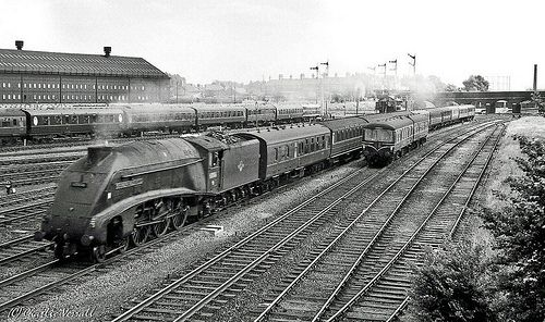 steam trains doncaster station photos - Google Search
