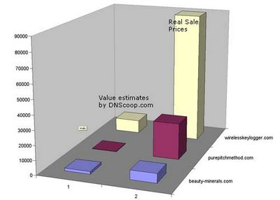 Web Site Valuation Guide