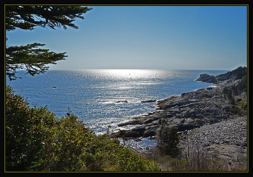 1000 Images About Maine Born On Peaks Island Maine On