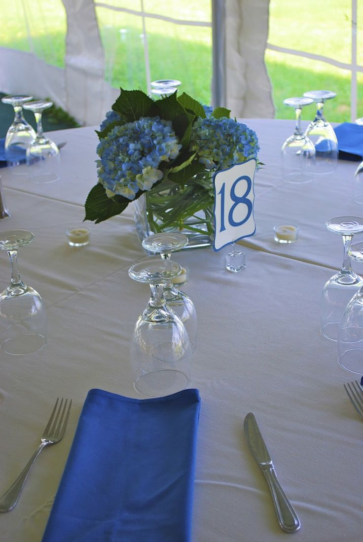 New Fusion Events Shades Of Blue A Vineyard Wedding Sapphire WeddingAnniversary