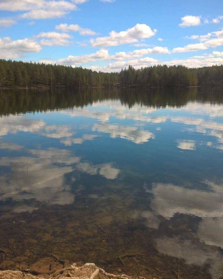 """Nature of Rokua. Clear-watered lakes in Finland. JoogAurinkolapsi (@joogaurinkolapsi) Instagramissa: """"#rokua #luonto #luontomatkailua #pysähdy"""""""