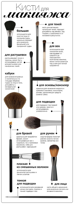 Инфографика: 12 кистей для макияжа - Я Покупаю