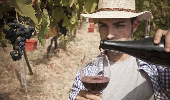 Best Italian wines by Jamie Goode | Food & Recipes | Life & Style | Daily Express