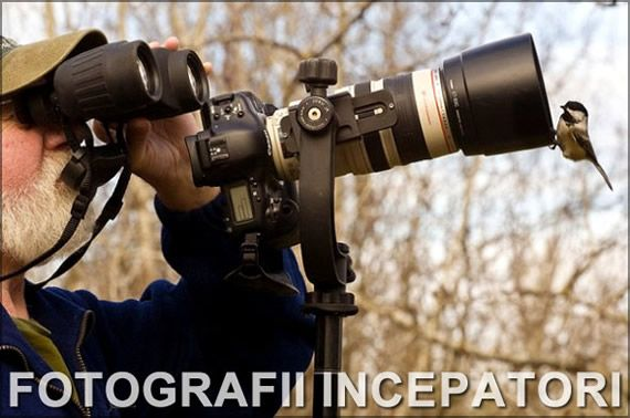 Sfaturi utile pentru fotografii incepatori  Tehnologica camerelor DSLR, numarul tot mai mare al optiunilor si setarilor poate fi coplesitor pentru un novice in materie de fotografie.