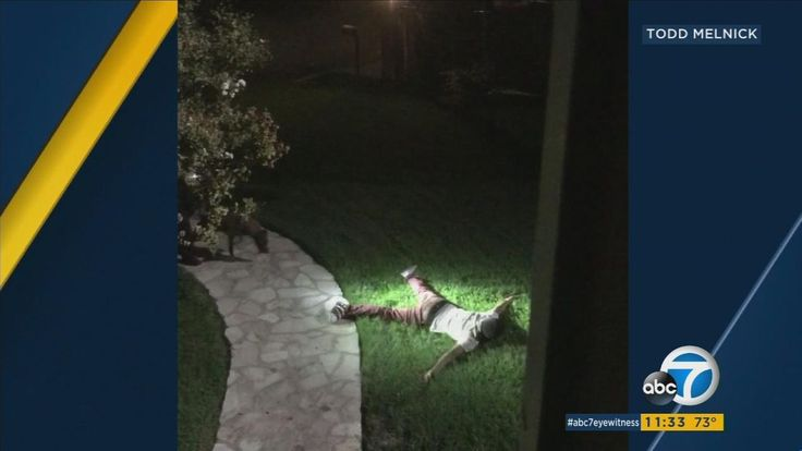 Instagram live video leads to Texas fugitive's arrest in Woodland Hills | abc7.com