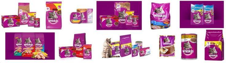 Whiskas Cat Food Wholesale in Delhi - Delhi Pet Shop - Online Pet Supplies - Pay by Cash/ Card - Door Step Delivery in Delhi, Noida and Gurgaon http://delhipetshop.in/whiskas-cat-food-wholesale-in-delhi/