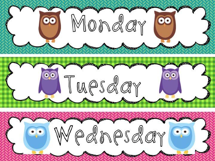 Owl Classroom Decorations Free ~ Best owl theme classroom ideas on pinterest