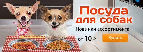 Купить зоотовары оптом дешево. Купить товары для животных оптом (оптовые товары для животных) в Москве и Екатеринбурге в интернет-магазине Сима-ленд