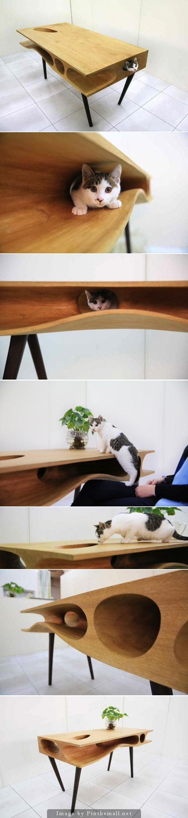 CATable by Ruan Hao, LYCS http://www.mymodernmet.com/profiles/blogs/shared-table-where-people-can-work-and-cats-can-wander