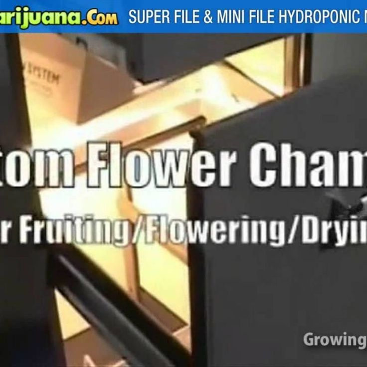 File Cabinet Grow Box Conversion