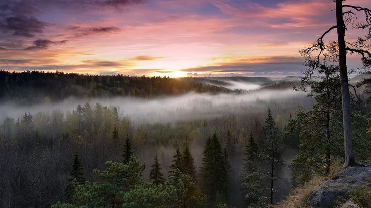The Splendor Of Nuuksio National Park