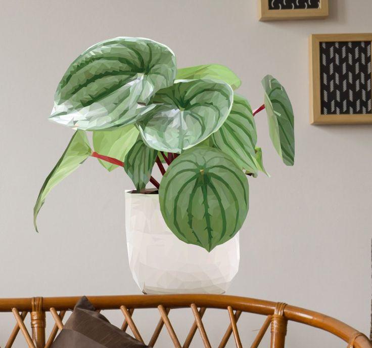 Muursticker geometrisch tropische plant  Mooie geometrische muursticker van een tropische plant in een pot. Fraaie wanddecoratie om groen in uw huis te brengen. Wilt u ook een fraaie tropische plant in huis maar heeft u er geen plek voor? Neem dan deze mooie kamerplant sticker en fleur uw huis prachtig op. Ook heel geschikt voor in de badkamer of toilet. Erg praktisch zelfs omdat de sticker geen plek inneemt zoals een echte plant dat zou doen. De sticker is watervast en kan dus in elke…