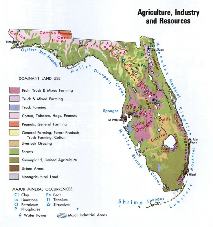 Die Besten Detailed Map Of Florida Ideen Auf Pinterest - Agriculture by state us map