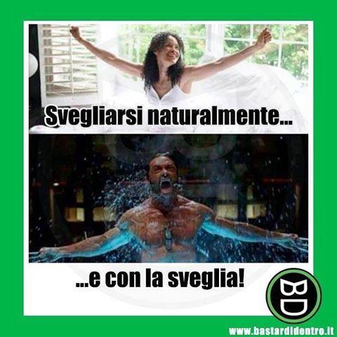 #Svegliarsi con la #sveglia #bastardidentro www.bastardidentro.it